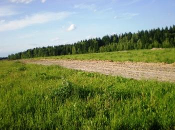 Коттеджный поселок Андреевское